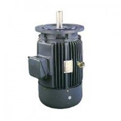 Vertical Flanged Mounted type Induction Motors